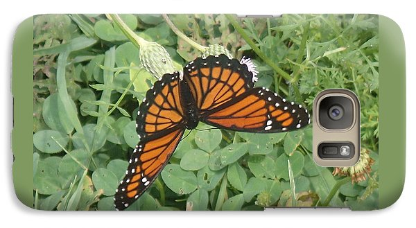 Galaxy Case featuring the photograph Viceroy by Robert Nickologianis
