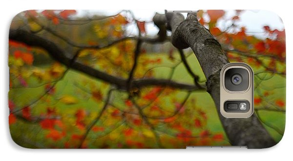 Galaxy Case featuring the photograph View From A Tree by Alex King