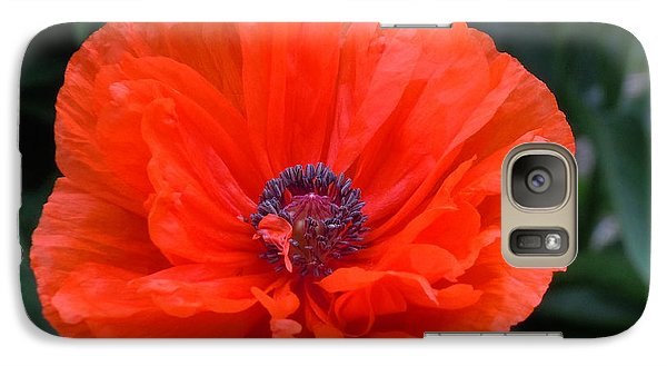 Galaxy Case featuring the photograph Village Poppy by Francine Frank