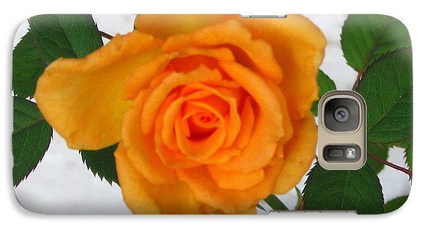Galaxy Case featuring the photograph Vine And Rose by Gayle Price Thomas