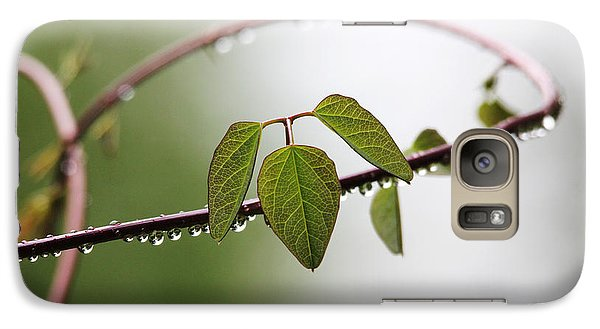 Galaxy Case featuring the photograph Vine With Raindrops by Trina  Ansel