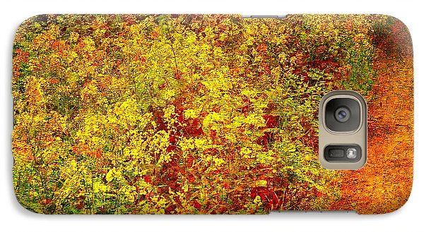 Galaxy Case featuring the photograph Vintage Garden Path by Terri Gostola