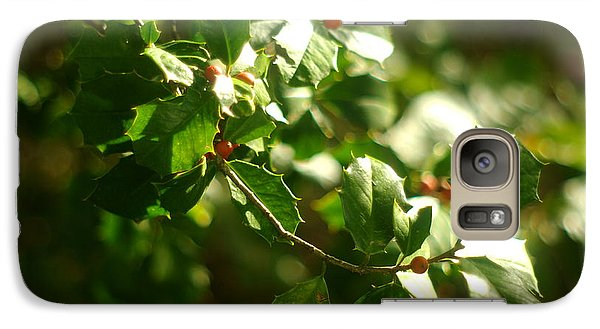 Galaxy Case featuring the photograph Virginia Holly Tree And Berries by Suzanne Powers