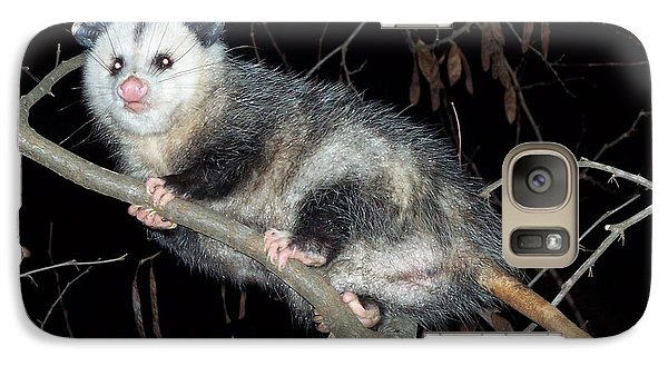 Galaxy Case featuring the photograph Virginia Opossum by William Tanneberger