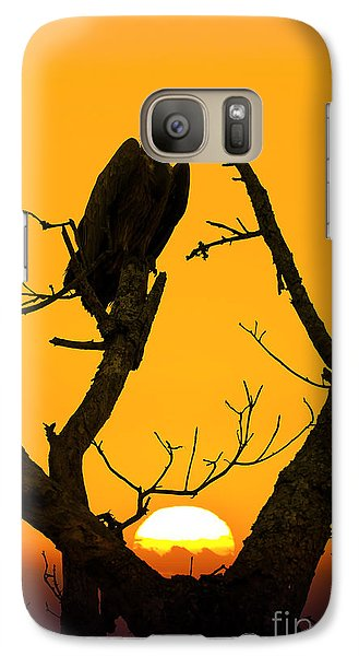 Vulture Galaxy S7 Case - Vulture by Delphimages Photo Creations