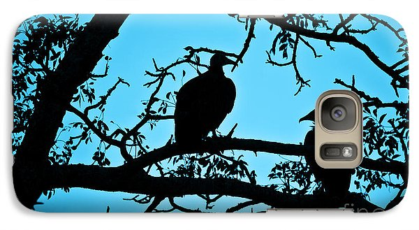 Vulture Galaxy S7 Case - Vultures by Delphimages Photo Creations