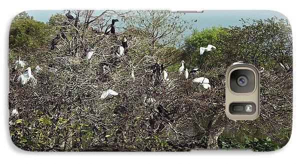 Anhinga Galaxy S7 Case - Wading Birds Roosting In A Tree by Bob Gibbons