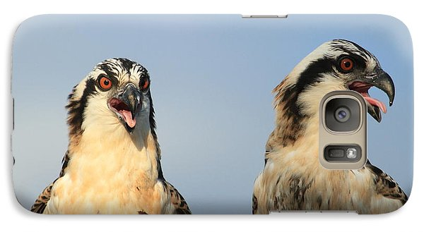 Galaxy Case featuring the photograph Waiting To Fly by Geraldine DeBoer