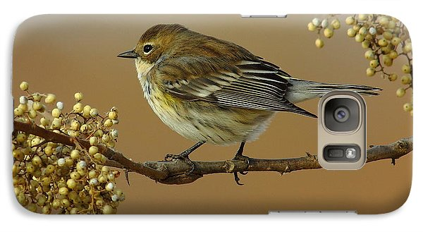 Yellow Rumped Warbler Galaxy S7 Case