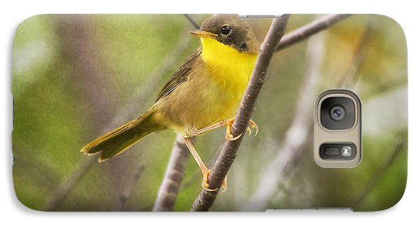 Warbler Galaxy S7 Case - Warbler In Sunlight by Susan Capuano
