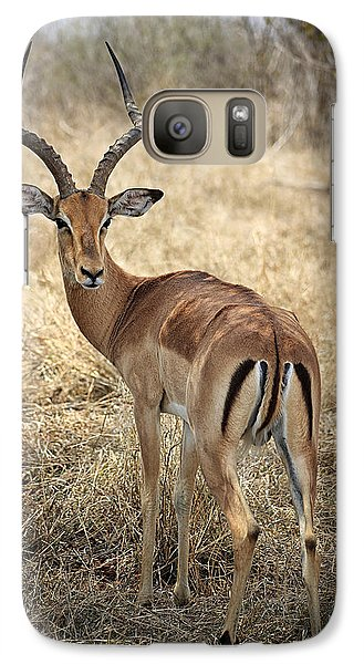 Galaxy Case featuring the photograph Watchful Impala by Kim Andelkovic