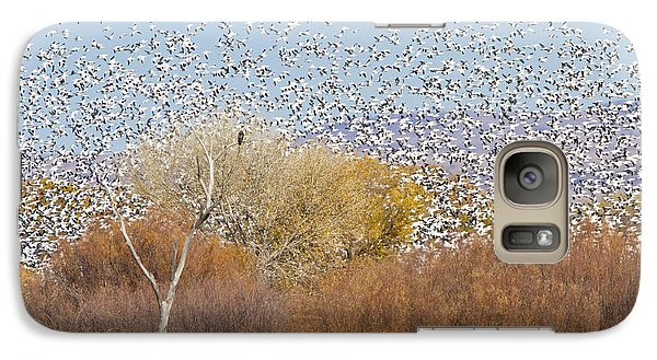 Galaxy Case featuring the photograph Watching Over The Flock by Bryan Keil