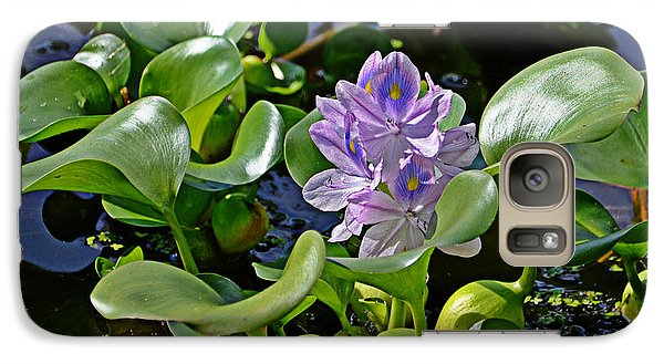 Galaxy Case featuring the photograph Water Hyacinth by Linda Brown
