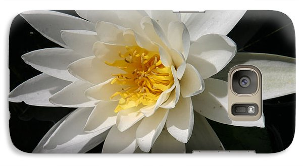 Galaxy Case featuring the photograph Water Lily  by Denyse Duhaime