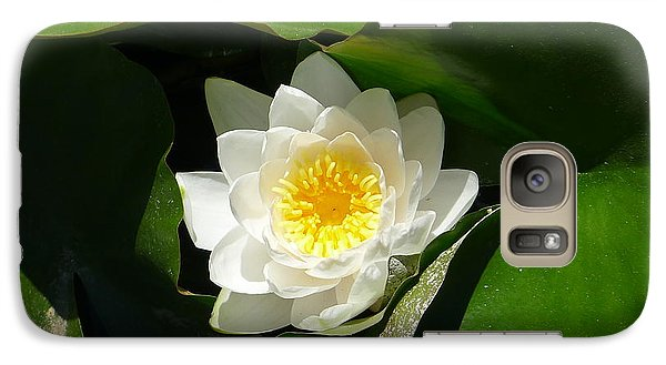 Galaxy Case featuring the photograph Water Lily by Nora Boghossian