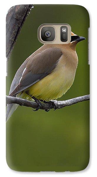 Cedar Waxing Galaxy S7 Case - Wax On by Tony Beck