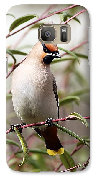 Waxwing Galaxy S7 Case