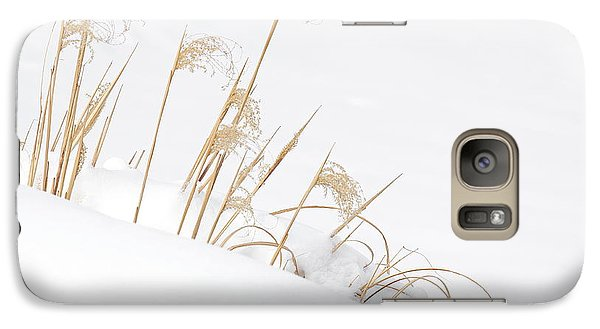 Galaxy Case featuring the photograph West Falls Winter Grass by Don Nieman