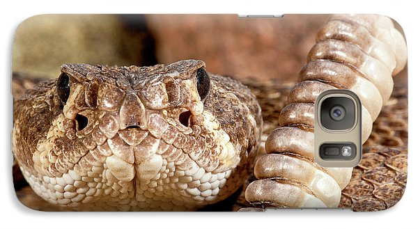 Western Diamondback Rattlesnake Galaxy Case by David Northcott