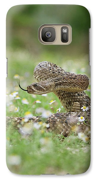 Western Diamondback Rattlesnake Galaxy Case by Larry Ditto