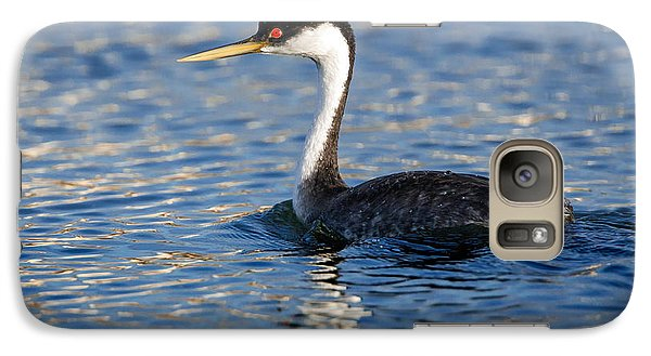 Galaxy Case featuring the photograph Western Grebe by Jack Bell