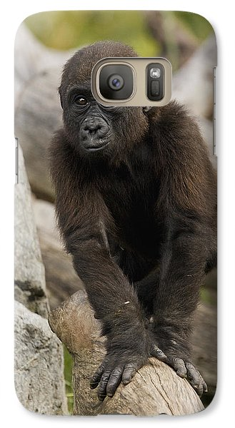 Western Lowland Gorilla Baby Galaxy S7 Case by San Diego Zoo