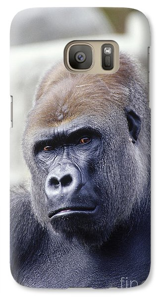 Western Lowland Gorilla Galaxy S7 Case by Gregory G. Dimijian