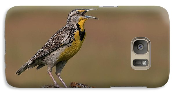 Western Meadowlark.. Galaxy Case by Nina Stavlund
