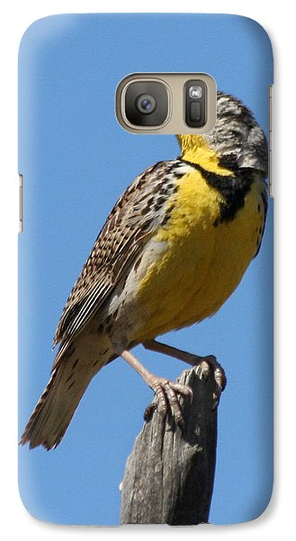 Western Meadowlark Perching Galaxy Case by Bob and Jan Shriner
