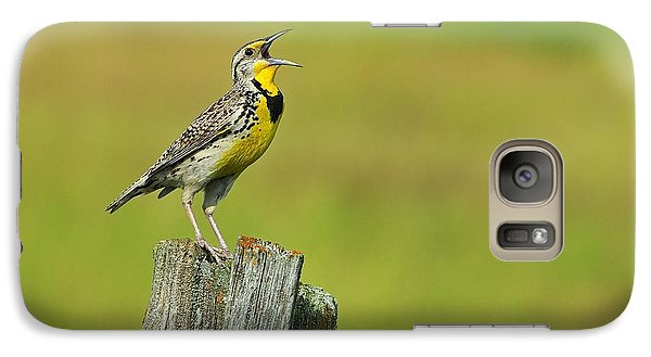 Western Meadowlark Galaxy Case by Tony Beck