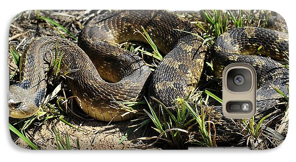 Galaxy Case featuring the photograph Western Plains Hognose Snake by Karen Slagle