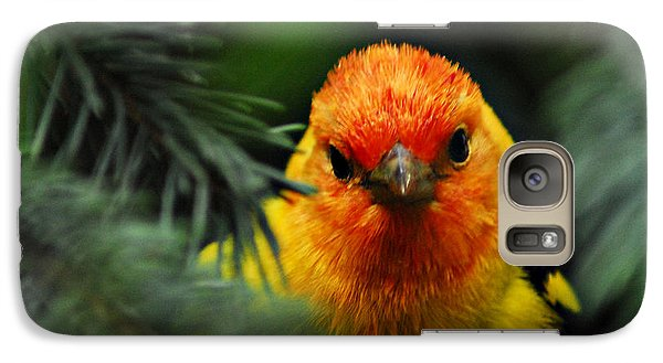 Galaxy Case featuring the photograph Western Tanager by Sam Rosen