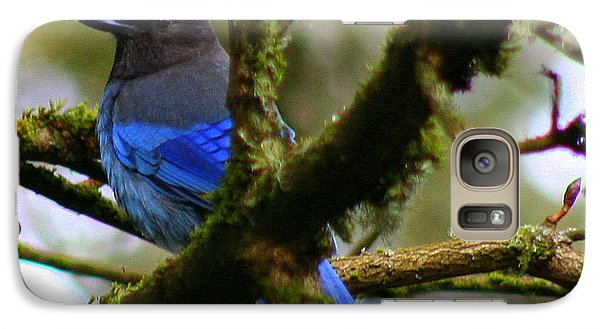 Galaxy Case featuring the photograph What Did He Call Me by Debra Kaye McKrill