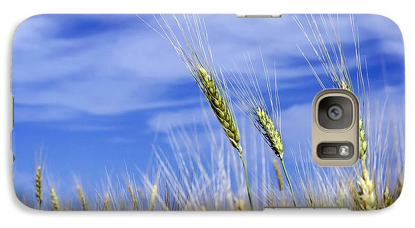 Galaxy Case featuring the photograph Wheat Trio by Keith Armstrong