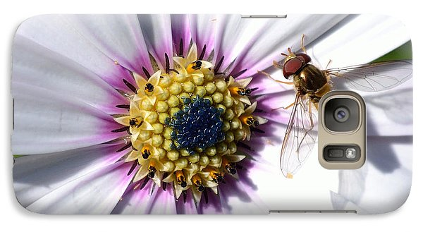 Galaxy Case featuring the photograph White African Daisy Marmalade Fly by Scott Lyons