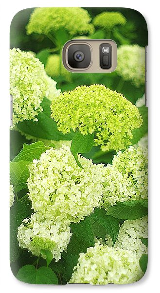 Galaxy Case featuring the photograph White And Green Hydrangea Flowers by Suzanne Powers