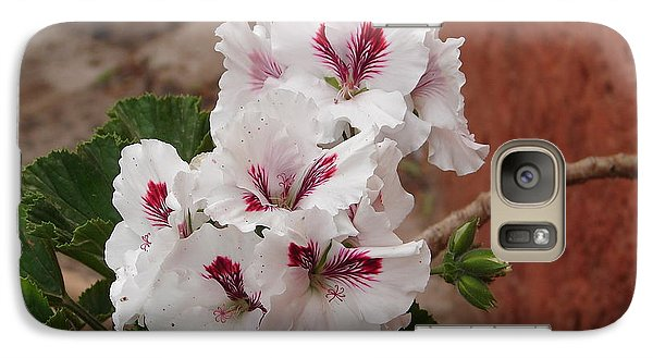 Galaxy Case featuring the photograph White And Red Geraniums by Lew Davis