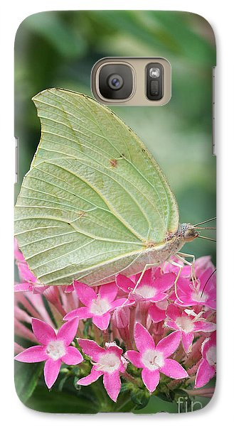 Galaxy Case featuring the photograph White Angled Sulphur by Judy Whitton