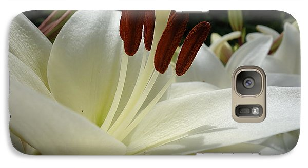 White Asiatic Lily Galaxy S7 Case by Jacqueline Athmann