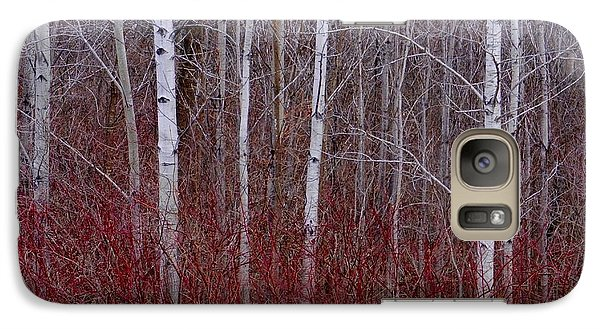 Galaxy Case featuring the photograph White Birch In The Adirondacks by Karen Molenaar Terrell