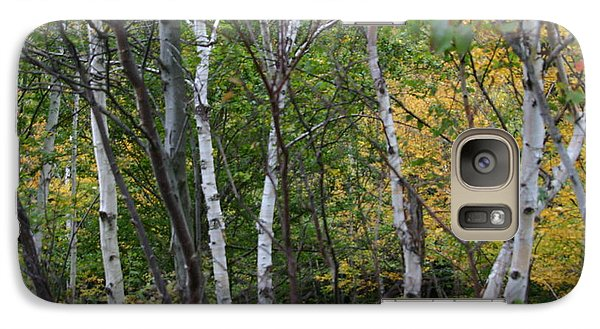 Galaxy Case featuring the photograph White Birches In The Woods by Denyse Duhaime