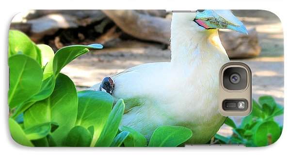 Galaxy Case featuring the photograph White Bird by Kristine Merc