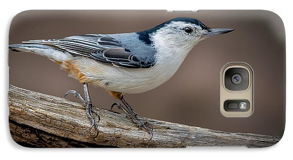 Galaxy Case featuring the photograph White Breasted Nuthatch by Steve Zimic