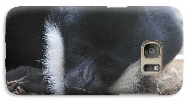 Galaxy Case featuring the photograph White-cheeked Gibbon - 0004 by S and S Photo