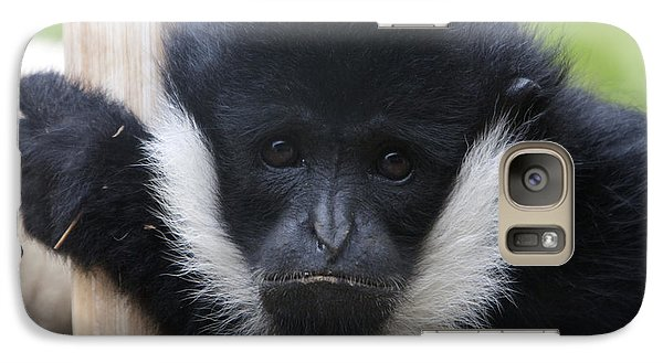 Galaxy Case featuring the photograph White-cheeked Gibbon - 0006 by S and S Photo