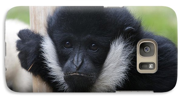 Galaxy Case featuring the photograph White-cheeked Gibbon - 0007 by S and S Photo
