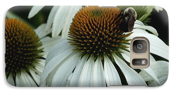Galaxy Case featuring the photograph White Coneflowers  by James C Thomas