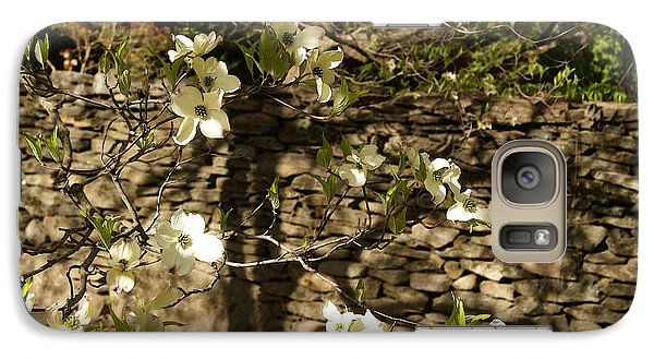 Galaxy Case featuring the photograph White Dogwood At The Stone Wall by Margie Avellino