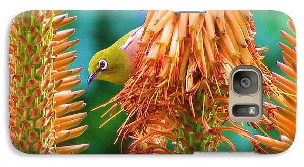 Galaxy Case featuring the photograph White-eye On Deer-horn by Michele Penner