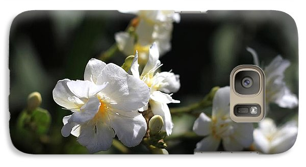 Galaxy Case featuring the photograph White Flower - Early Spring Time by Ramabhadran Thirupattur